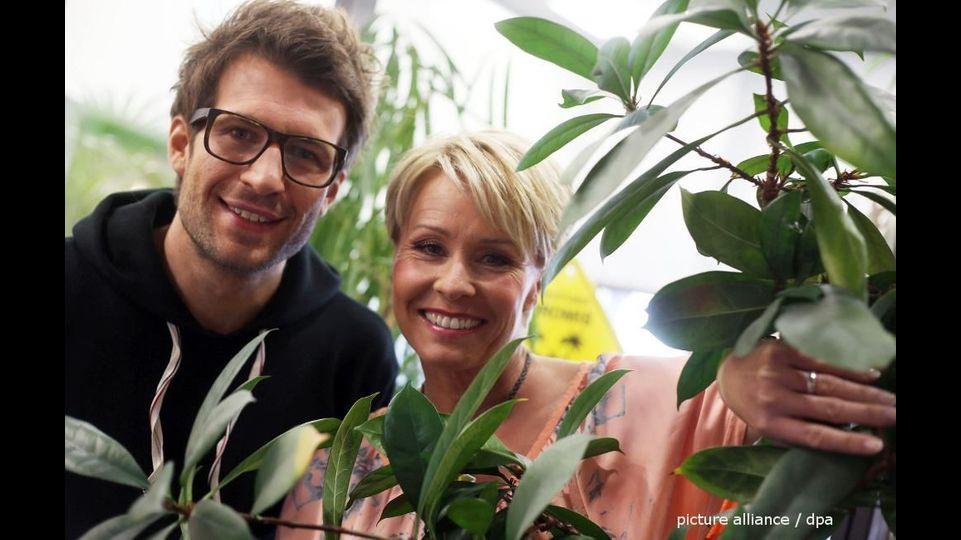 Dschungelcamp in der Kritik: Das sagt Sonja Zietlow