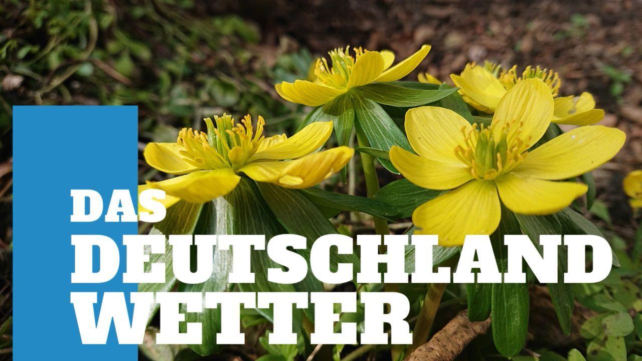 Deutschland-Wetter: 5-Tage-Trend – Nochmal Schnee im Anmarsch