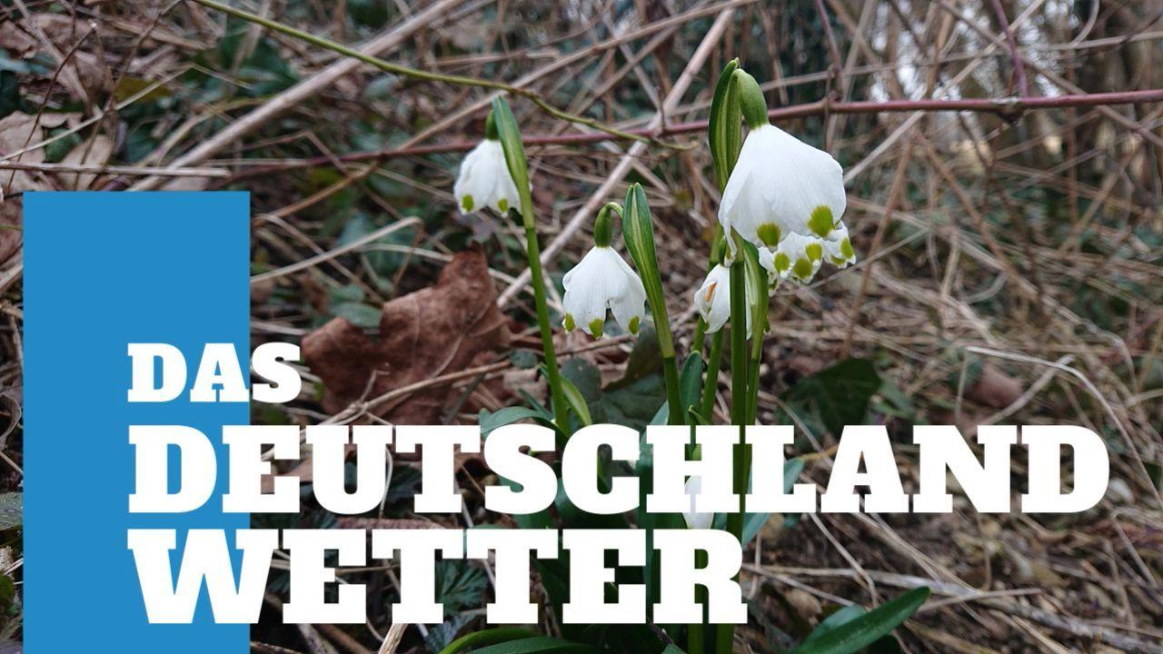 Deutschland-Wetter: 5-Tage-Trend – Vorbote des Frühlings
