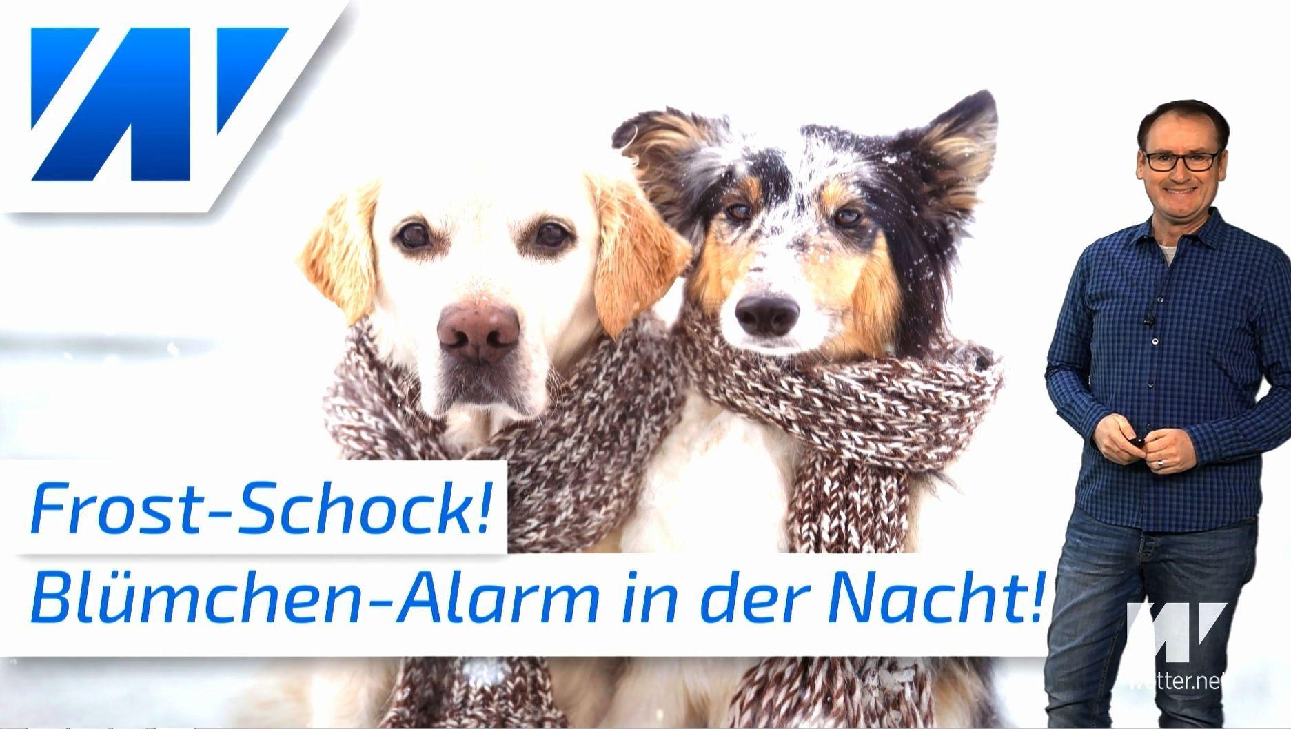 Frostschock bis minus 10 Grad! Die Temperaturen stürzen ab!